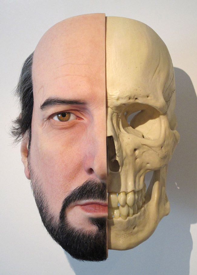 Calcium divide (self portrait), 2011  mixed media 840cm x 600cm x 660cm